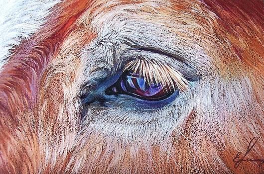 Eyelashes by Elena Kolotusha