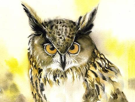 Alfred Ng - eyes of the owl