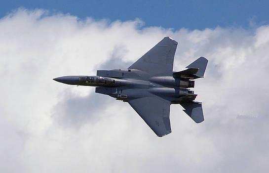 Stephen Roberson - F-15 Eagle