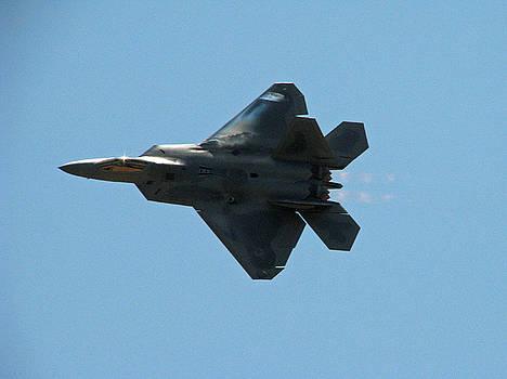 F-22 Raptor by Chaz McDowell