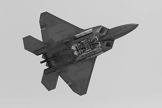 John Daly - F-22 Weapons Bays