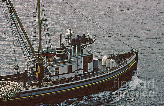 California Views Mr Pat Hathaway Archives - F/V purse seiner Avalon of Gig Harbor Sept. 1983