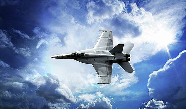 F18 Fighter Jet by Aaron Berg
