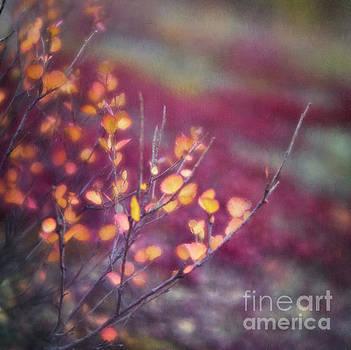 Golden leaves by Priska Wettstein