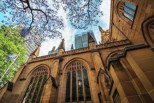 Facade of Saint Andrew's Cathedral in Sydney by Daniela Constantinescu