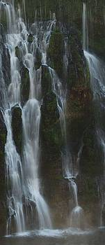 Face in the Falls by Lawrence Pratt