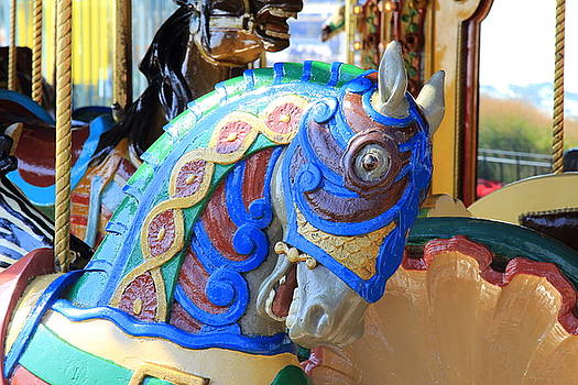 Face Of A Merry Go Round Horse by Fiona Kennard