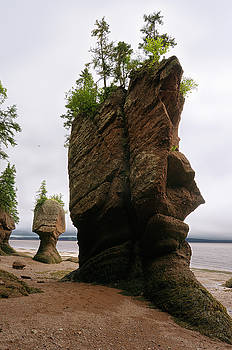 Reimar Gaertner - Face of ET and Motherinlaw flowerpot sea stacks at Hopewell Rock