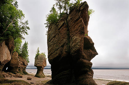 Reimar Gaertner - Face of ET and Motherinlaw sea stacks at Hopewell Rocks Bay of F