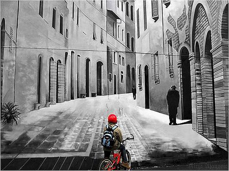 Facing the Wall of Illusions by Mirza Ajanovic