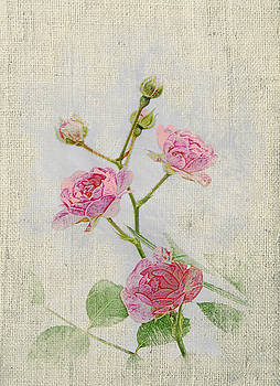 Michael Peychich - Faded Floral 3