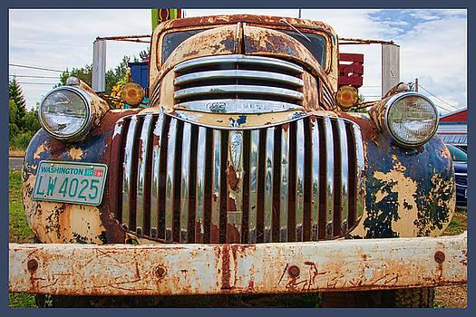 Faded Glory by Judy Wright Lott