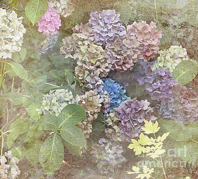 Fading Flowers by Victoria Harrington