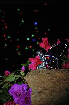Cheryl Hall - Faerie fairy garden