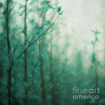 In the deep forest 2 by Priska Wettstein