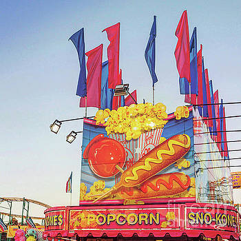 Fair Food by Cindy Garber Iverson