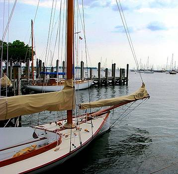 Fair Weather Annapolis  by Angela Davies