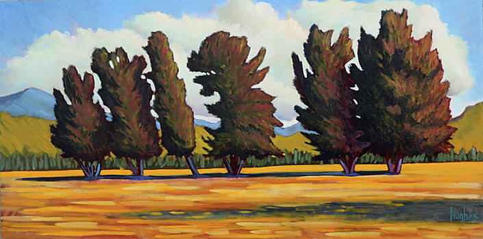 Fairfield Tree Row by Kevin Hughes