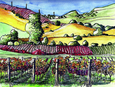 Fairfield Vineyards by Terry Banderas