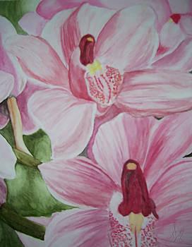 Fairies in Flowers by Tiffany Lynn Thielke