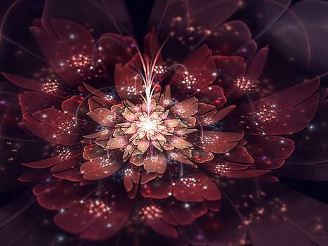 Fairy Dust Fantasy by Amorina Ashton