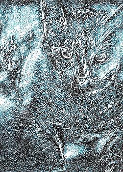 Fairy Dust by Jennifer Choate