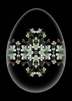 Marsha Tudor - Fairy Egg White