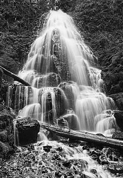 Jamie Pham - Fairy Falls