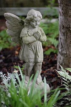 Fairy Garden by Sherry Hahn
