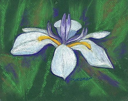 Fairy Iris 2 by Olga Kaczmar