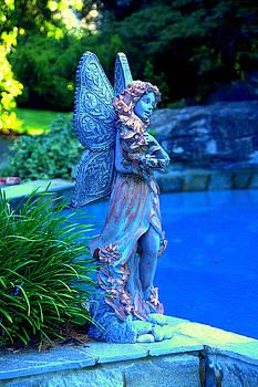Fairy At Tale Farrington Lake by Aron Chervin