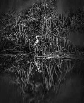 Fairy Tale Heron BW #h2 by Leif Sohlman