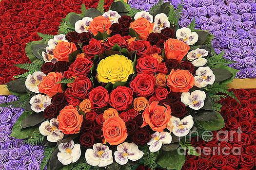 Fairy Tale Roses  by Dora Sofia Caputo Photographic Design and Fine Art