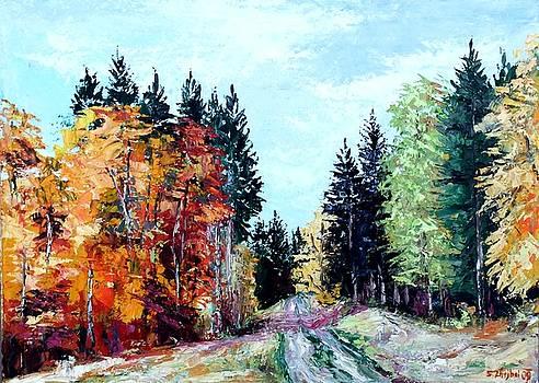 Fairytale Forest by Stanislav Zhejbal