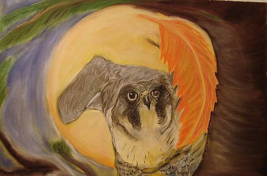 Falcon waiting in the eastern moonlight by Michelle  Thomann-Ramirez