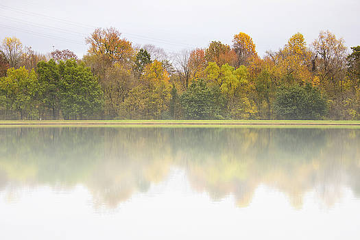 Fall and Fog by Ben Shields