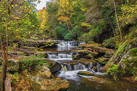 Fall at Bark Camp creek by Ulrich Burkhalter