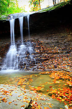 Fall At Blue Hen Falls by Newman Artography