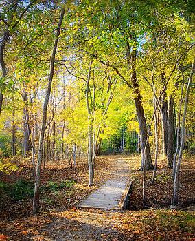 Fall at Elizabeth Morton by Vicki Jauron