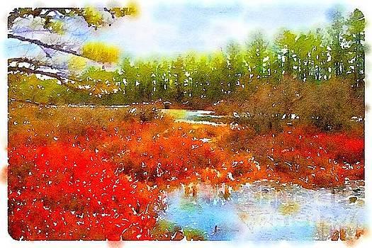 Fall at Lake Wawayanda New Jersey by John Castell