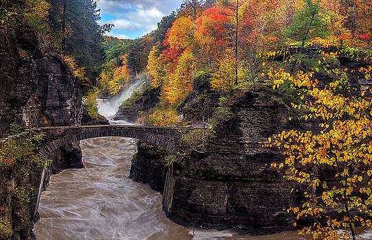 Fall At Lower falls Letchworth by Mark Papke