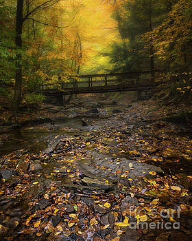 Fall at Ricketts Glen by Jerry Fornarotto