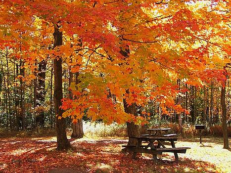 Fall At The Park by Judy  Waller