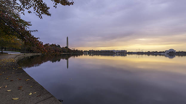 Fall at the Tidal Basin by Michael Donahue