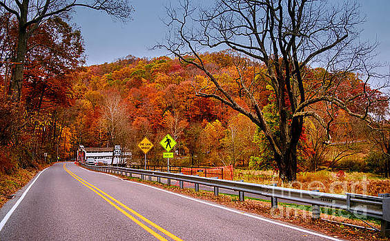Fall at Valley Forge by Rima Biswas