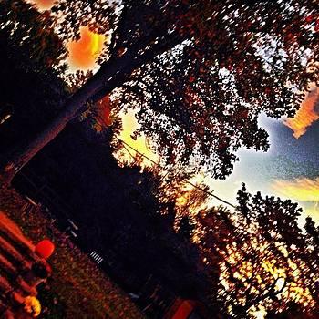 Fall Backyard by Bridgett Dockray