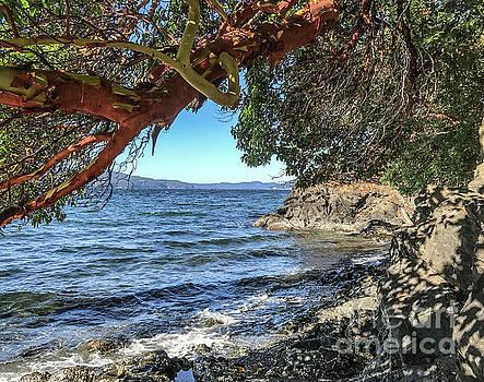 Fall Beach Breezes by William Wyckoff