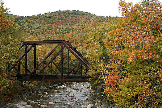 Kathy Stanczak - Fall Bridge