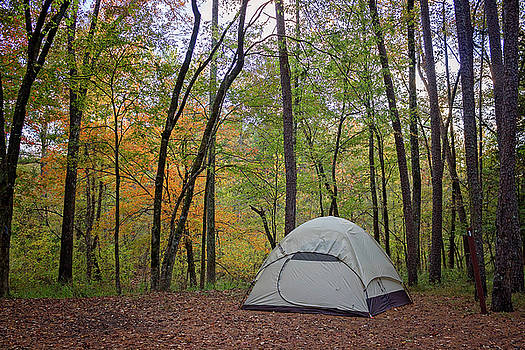 Fall Camping by Tammy Chesney
