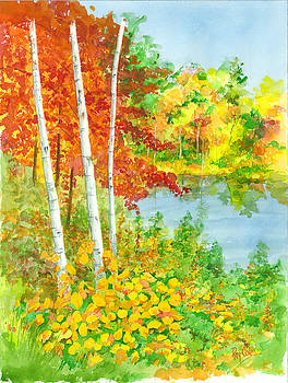 Wisconsin Fall Colors by Ray Cole